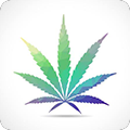 Cannabis Law Report favicon