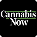 Cannabis Now