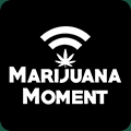 Marijuana Moment favicon