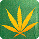 Toke of the Town logo
