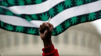 4/20 2021: Your DIY Guide to Protest Under Lockdown
