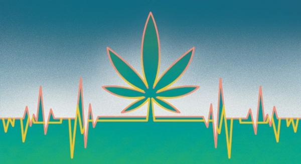 American Heart Association Says Weed Is…