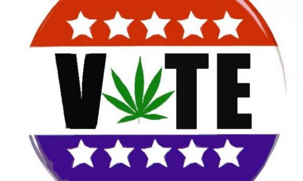 photo of Senate Candidates In Three States Pressed On Marijuana Issues At Debates image
