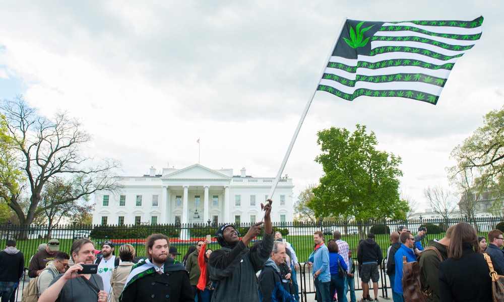 photo of Could There Soon Be Legal Recreational Weed Sales in Washington, DC? image