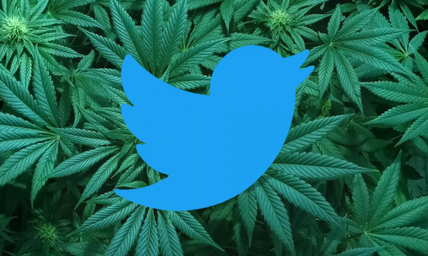 photo of Lots Of Politicians And Companies Are Tweeting About Marijuana On 4/20 image