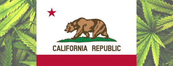 California Cannabis Changes: What Might…