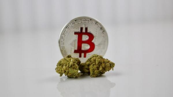 Pay Cannabis Tax with Cryptocurrency?…