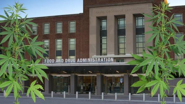 photo of FDA seeks public input on CBD rules by July image