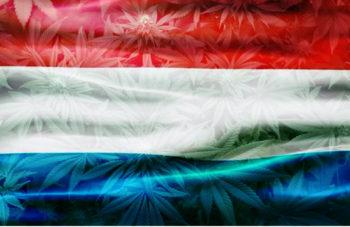 photo of Luxembourg to be First European Country to Legalise Cannabis image