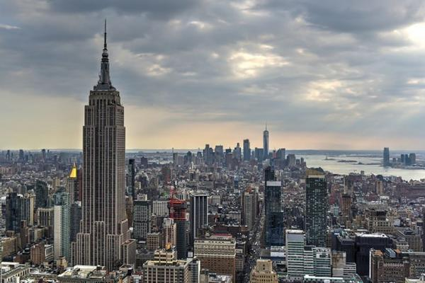 New York Regulators Advance Home Grow for Medical Cannabis Patients