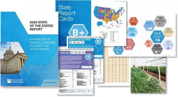 photo of Top 5 Key Takeaways from the 2020 State of the States Report image