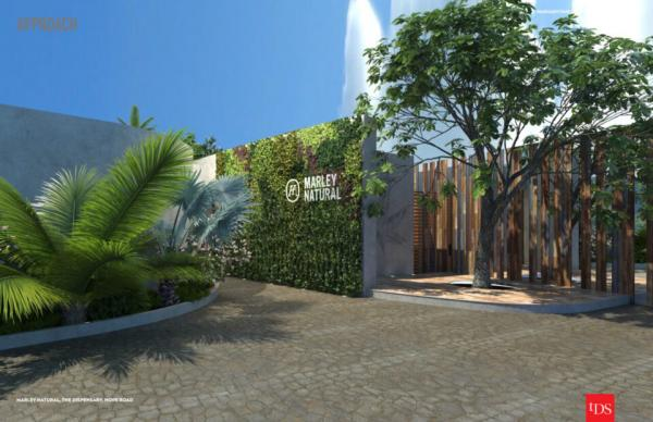 photo of Marley Dispensary To Open In Jamaica image