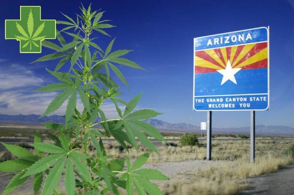 Time for AZ adults to light up, plant herb freely