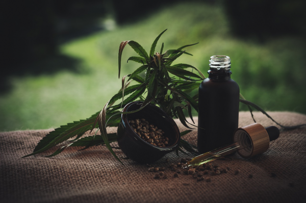 Healthy Herb: 7 Ways You Can Make…