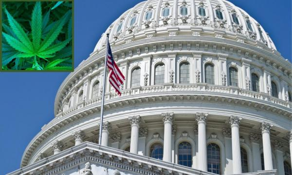 photo of Congress Will Vote On Federal Marijuana Legalization Next Month, House Leadership Announces image