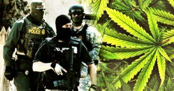 photo of Why Did the DEA Approve Synthetic Cannabis While the Real Thing Remains Illegal? image