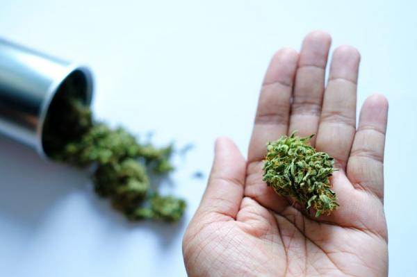 Does Weed Expire? Yes and Here's How to Keep it Fresh for Longer