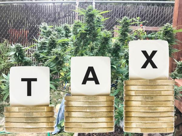 New cannabis tax hike math hurts the…