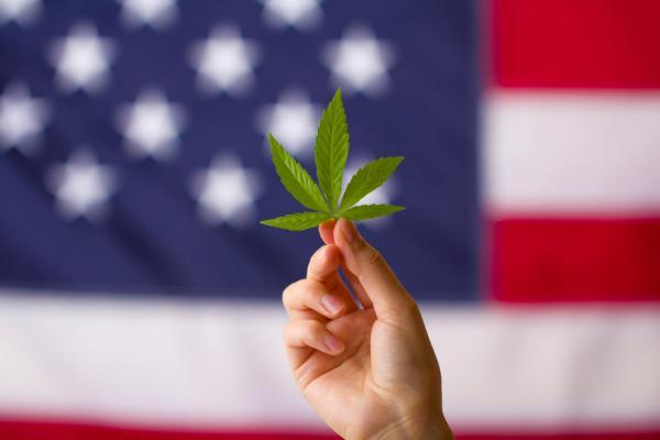 photo of House of Representatives Plans September Vote On Marijuana Decriminalization Bill image