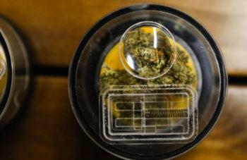 photo of Demand For New Cannabis Stocks Heats Up image