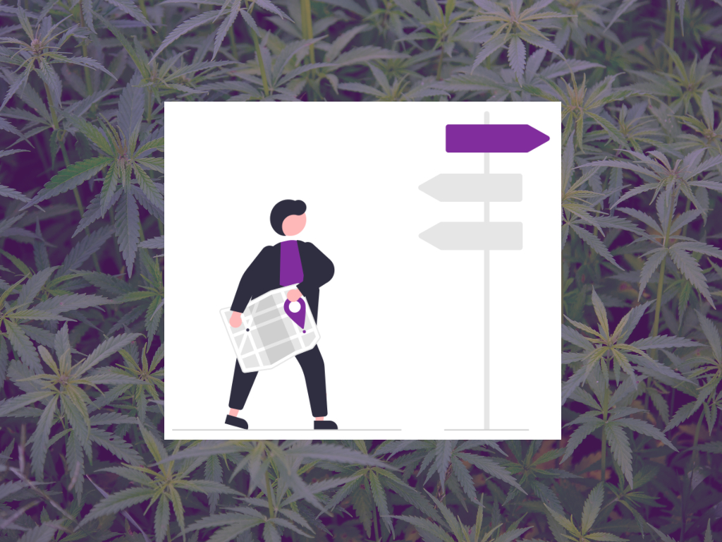 How to Get Started With Cannabis Wellness in 9 Easy Steps