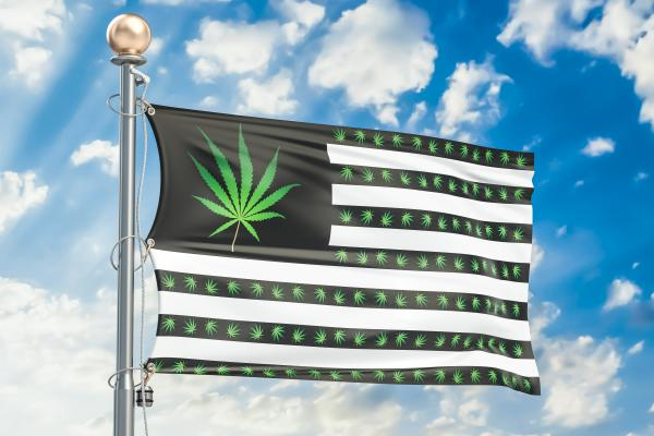 photo image How Did Cannabis Do in the Midterms? Let Me Count the Ways