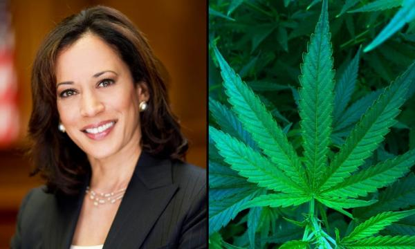 Kamala Harris Touts 'Commitment' To Marijuana Decriminalization And Expungements Under Biden Administration