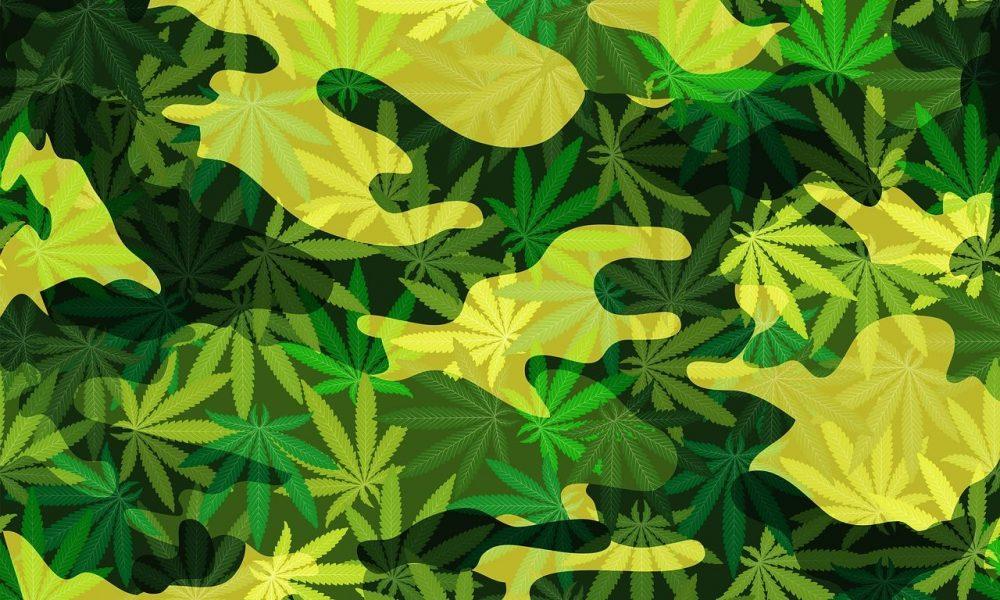 photo image Congress Removes Military Veteran Medical Marijuana Provision From Funding Bill