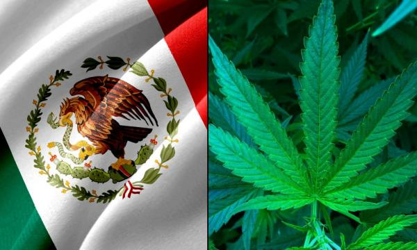 photo of Mexican Senate Committees Formally Approve Marijuana Legalization Bill For Full Floor Action image