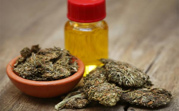 Illegal Cannabis Oil Linked To National…