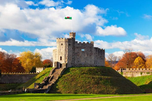 photo of Authorities Find Illegal Marijuana Grow Operation at Historic Castle in the UK image