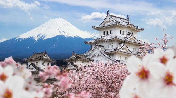 Weed in Japan: A Tale of Illegality and…