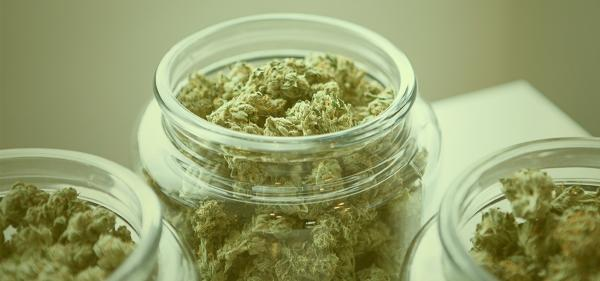 Tribal Court Allows Dispensary to Remain…