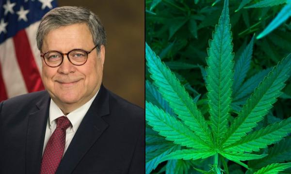 photo of Attorney General Wasted DOJ Resources To Investigate Marijuana Mergers Due To Personal Bias, Official Alleges image